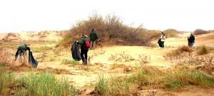 Neteja platges Deltebre